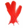 "Turkey Quill 12"" Red"
